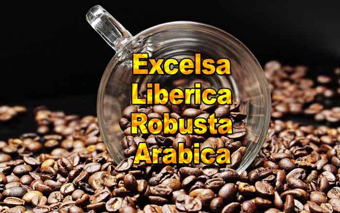 Quanti tipi di caffè esistono